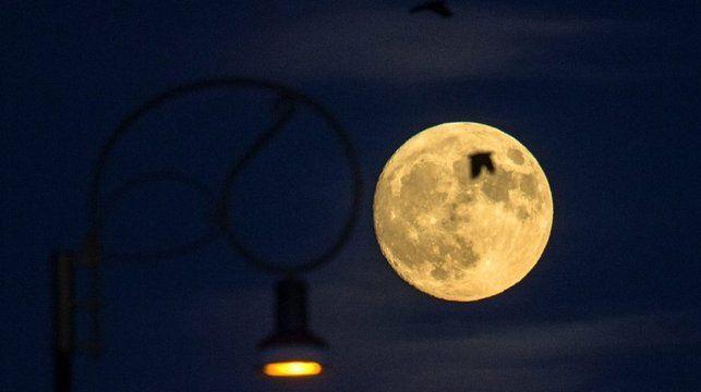 Esta noche hay superluna diario panorama for Que luna hay esta noche