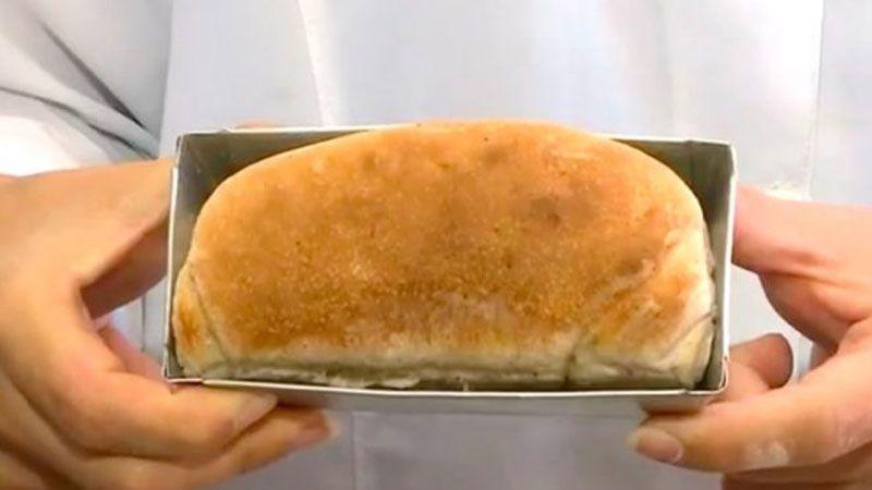 Pan de cucarachas contiene 50% más proteína que la carne roja