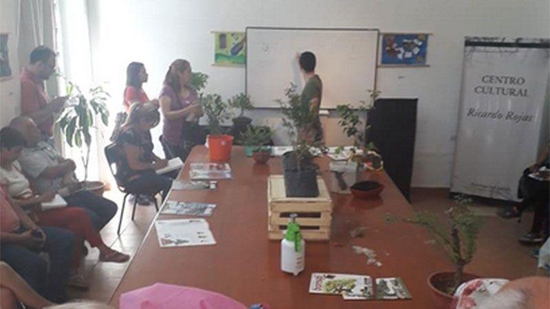 El curso de Bonsai se realiza en el Centro Cultural Ricardo Rojas
