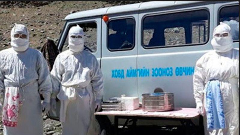 Adolescente en Mongolia muere de peste bubónica