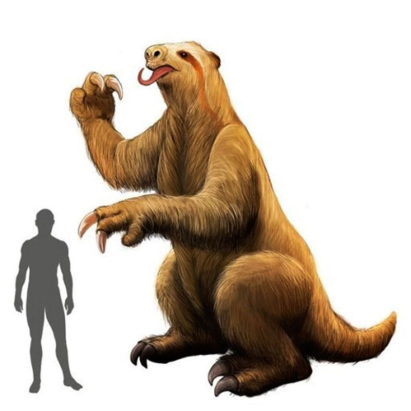 El Megatherium podría haber medido alrededor de 6 metros y pesar más de 3 mil kilos.
