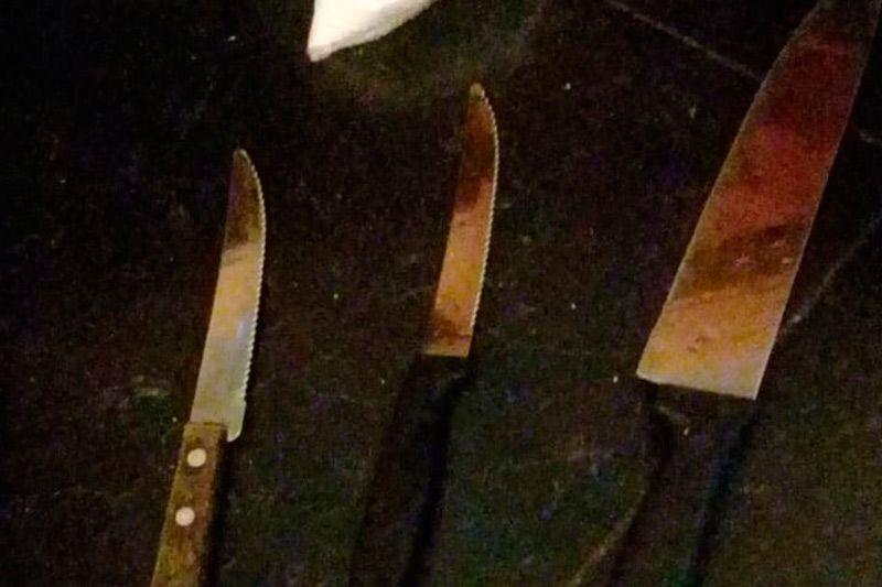Los cuchillos que habrían utilizado