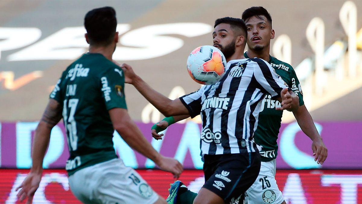 Palmeiras Se Consagr U00f3 Campe U00f3n De La Copa Libertadores En